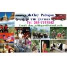 Chay Red Car Service ชายสองแถวแดงและรถตู้บริการนําเที่ยวเชียงใหม่